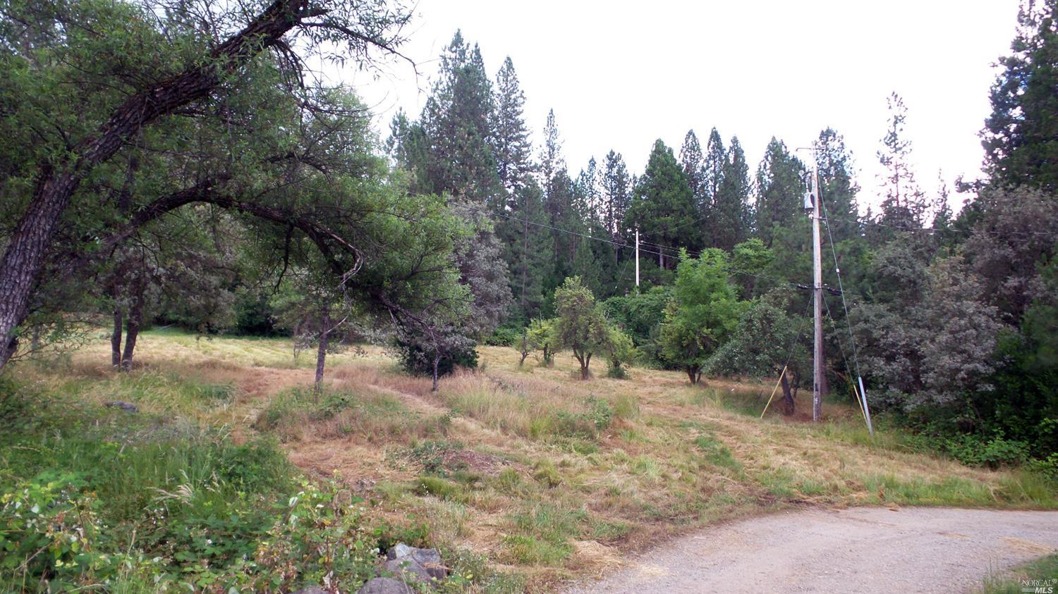 850 Lot 3 Kingston way Colfax, CA 95713 - MLS #: 21716759